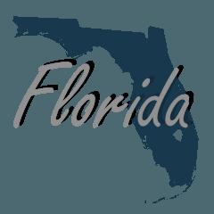 Converison Van For Sale Florida