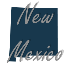 Conversion Van For Sale New Mexico