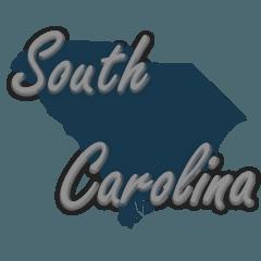 Conversion Van for sale South Carolina