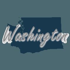 Conversion Van For Sale Washington